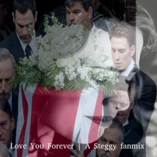 Love You Forever   A Steggy fanmix