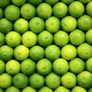 Sincere Lime