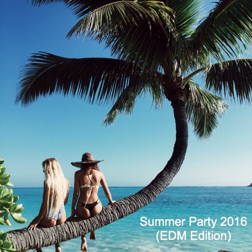 Summer Party 2016 (EDM Edition)