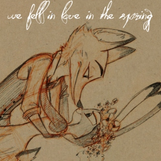 we fell in love in the spring