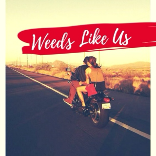 Weeds Like Us