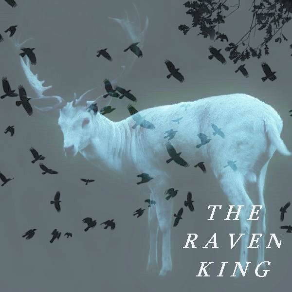 The Raven King: Chapter by Chapter