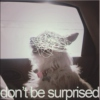 'don't be surprised' p2