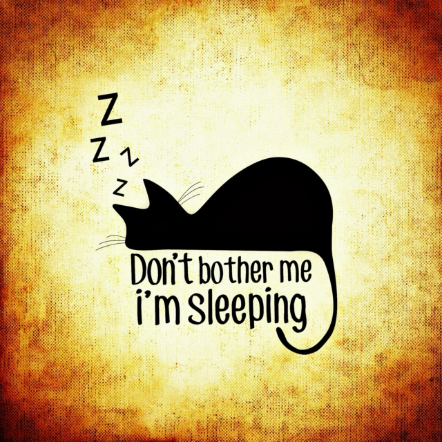 Don't bother me, i'm sleeping...