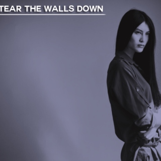 Tear The Walls Down
