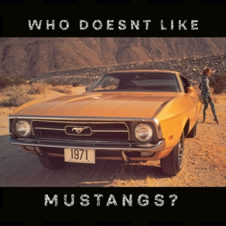 who doesnt like mustangs?