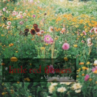 little red flowers (a THE SIDHE mix)