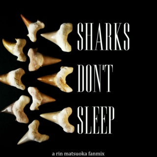 sharks don't sleep