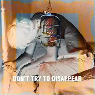 Don't Try To Disappear