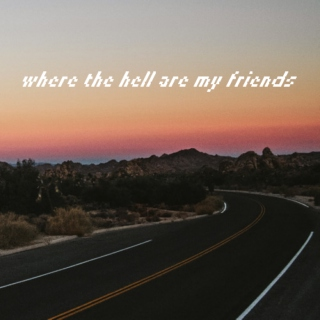 Where The Hell Are My Friends