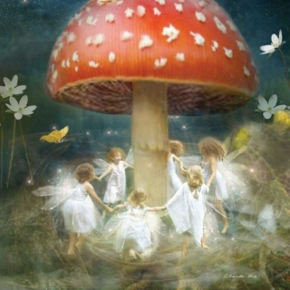 within the fairy ring