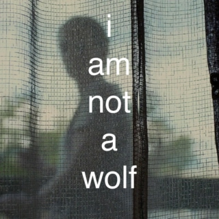 i am not a wolf - a sicario fanmix