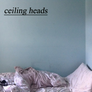 ceiling heads