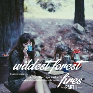 wildest forest fires, folk for the days outside II