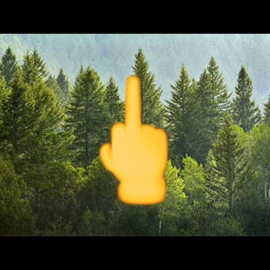 F*CK YOUR PINE TREES