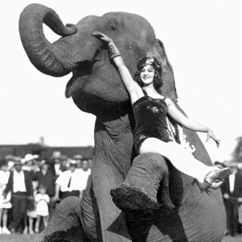 """Elephant Love Story: a mix inspired by """"Water for Elephants"""""""