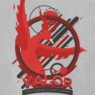 The (unofficial) Team Valor playlist