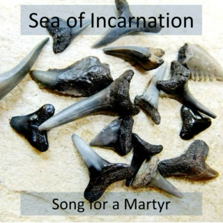 Sea of Incarnation