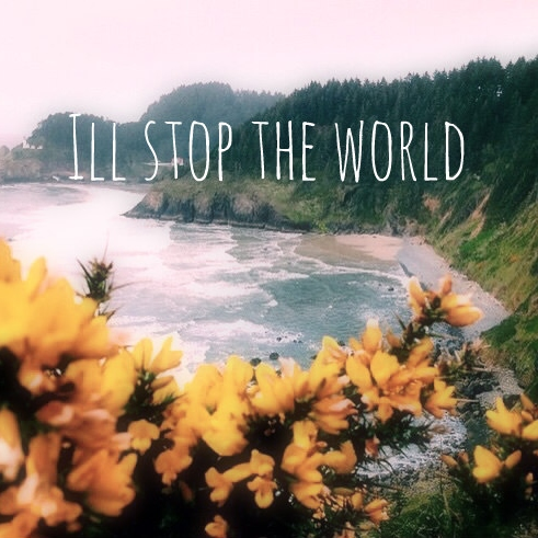 I'll stop the world (and melt with you)