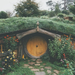 Life in the Shire