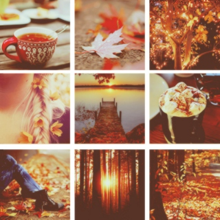 ❦ Autumn leaves