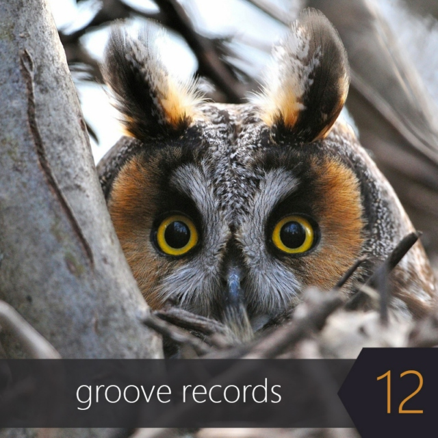 Groove Records 12