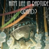Ain't Life in Rapture Grand?