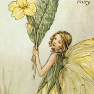 every blossomed flower, a fairy smiles