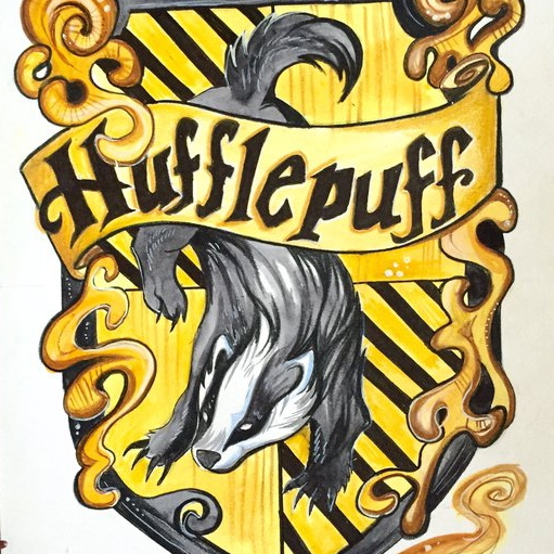 The Fair and Friendly Hufflepuff