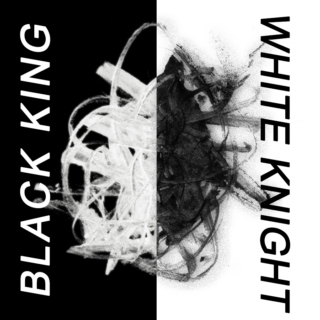 black king and white knight