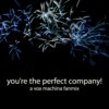 you're the perfect company!