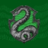 Slytherin Hype