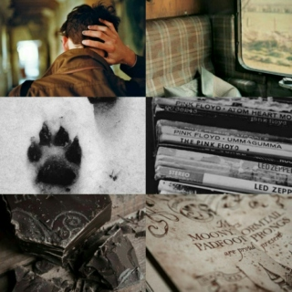 the marauders: remus