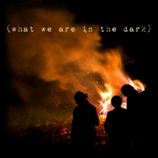 What We Are in the Dark