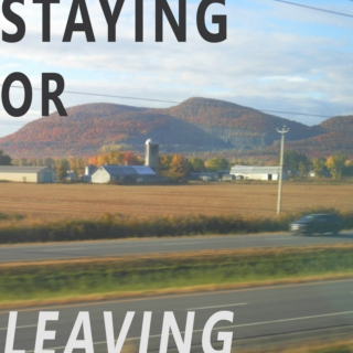 Staying or Leaving