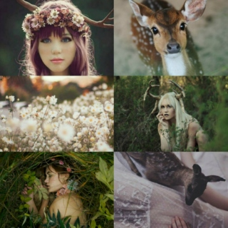 For the Fawns