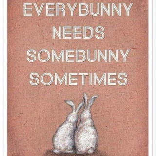 Bunny kind of love
