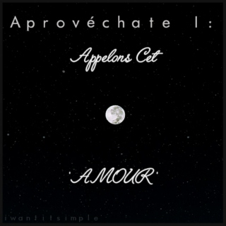 aprovéchate I:  appelons cet 'amour' (let's call this 'love')