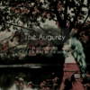 The Augurey: A Soundtrack for the End of the World