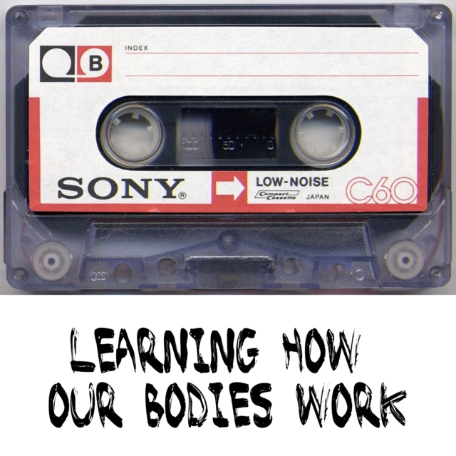 learning how our bodies work