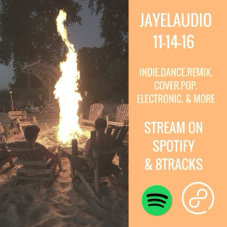 JayeL Audio 11-14-16