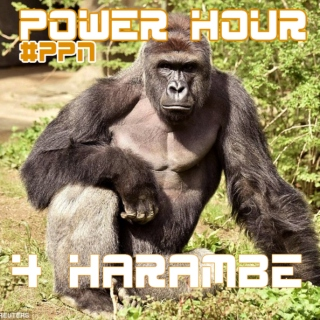 PPN Power Hour For Harambe [Hip Hop/Trap/EDM]