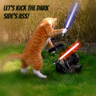 Let's Kick the Dark Side's Ass