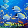 Smooth Jazz - Vol.29