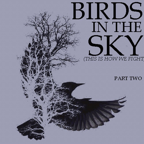 birds in the sky (this is how we fight) pt2