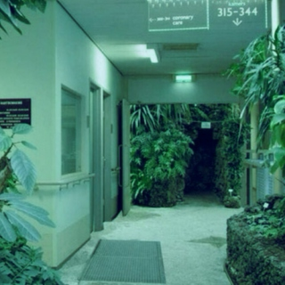 Night at the Hospital