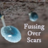 Fussing Over Scars