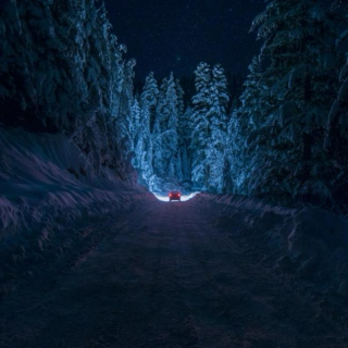 Winter Night Drive