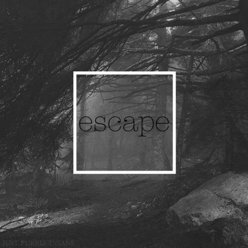 Escape from Reality