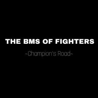 BMS OF FIGHTERS ~Champion's Road~